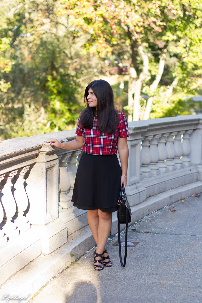 plaid crop top, black silk skirt.jpg