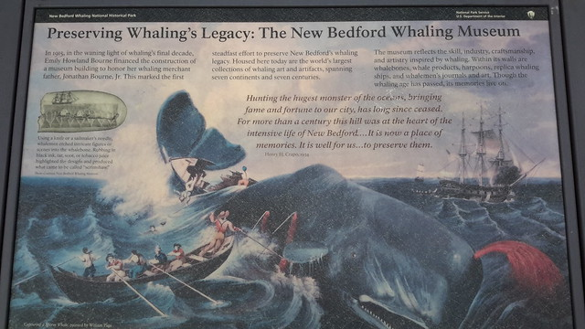Whaling out of the port in New Bedford, Mass.