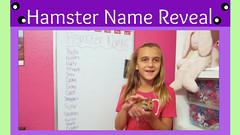 Thumbnail image for Hamster Name Reveal