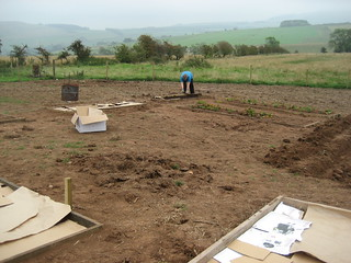 Putting in vege patches