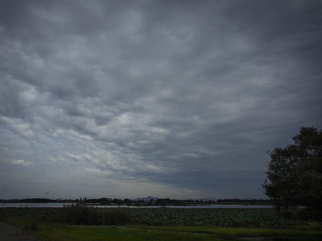 Autumn cloud