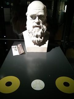 Modern Exhibit Design