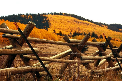 Kenosha Fall Fence