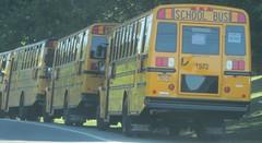 3rd Avenue Transit #1572