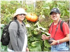 gardener(0.0), farmworker(0.0), agriculture(1.0), farm(1.0), produce(1.0), food(1.0), crop(1.0),