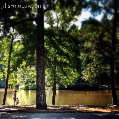 family trees lake water landscape virginia moments father memories scenic son richmond rva universityofrichmond