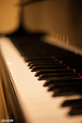 piano_2014_5072