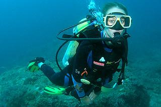 "<img src=""padi-open-water-diver-course-tioman-island-malaysia.jpg"" alt=""PADI Open Water Diver Course, Tioman Island, Malaysia"" />"