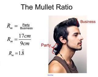 mulletPartyBiz