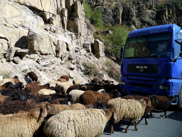 6) Kyrgyz Traffic