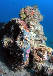 "<img src=""padi-wreck-diver-tioman-island-malaysia.jpg"" alt=""PADI Wreck Diver, Tioman Island, Malaysia"" />"