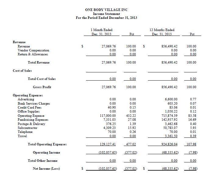 Financial Statement 2013