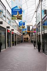 Zomer (Summer) No it's realy gone now! Drievriendenhof, Dordrecht