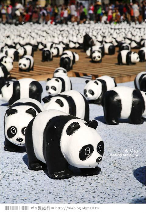 【台中】大都會歌劇院~可愛紙熊貓大軍來襲!台中七期的新亮點!11