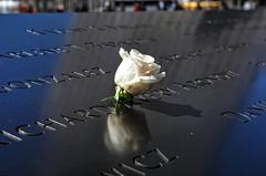 Never Forgotton...