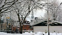 Last of the Winter Snow (88)