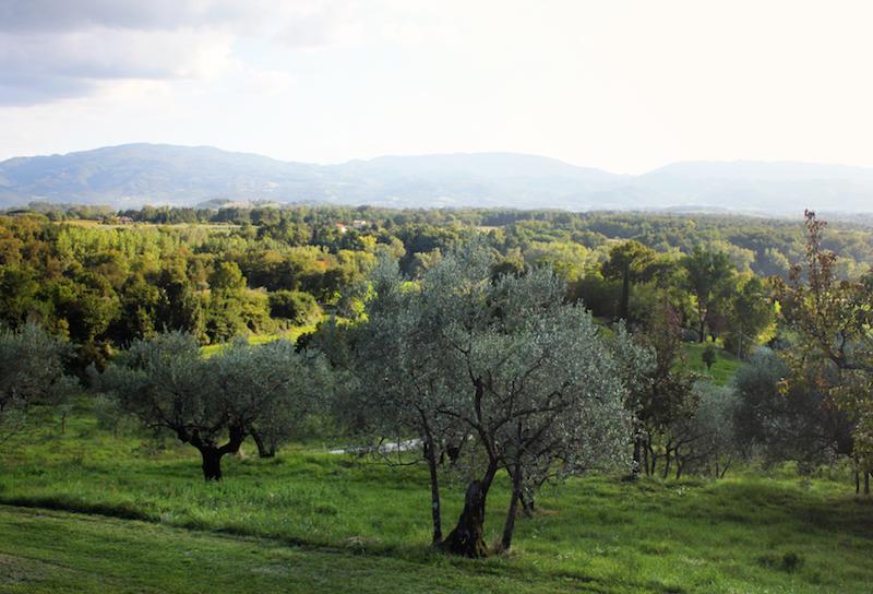 Tuscany wedding Il Poggio alle Ville Raffaele Edlmann