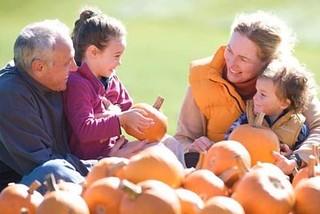 Fall pumpkins (okemo.com)