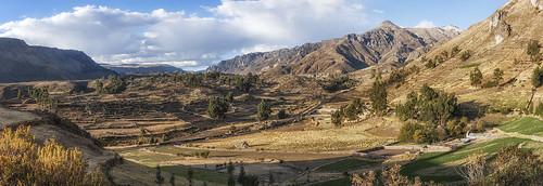panorama peru southamerica canyon perù colca sudamerica americadelsur cañondelcolca