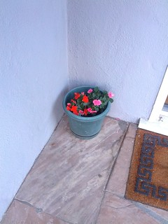 Extra impatiens on the front porch, now