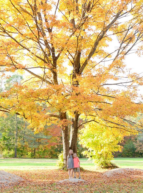 fall2014-3