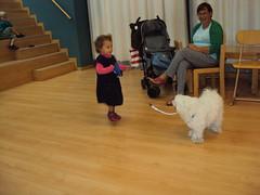 K2 : Brutus, de hond van juf Els op bezoek...