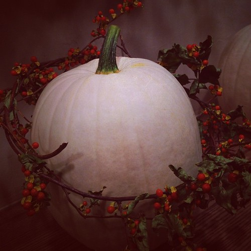 Autumn - white pumpkin and bittersweet crown