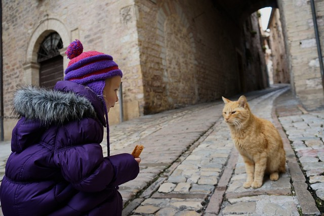 child-cat-spello-umbria-cr-matt-asensio