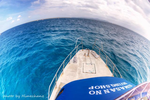 船上は荒れ荒れでしたが、水中は静かでした♪