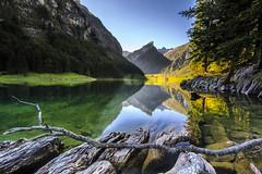 Swiss Alps: Alpstein Seealpsee