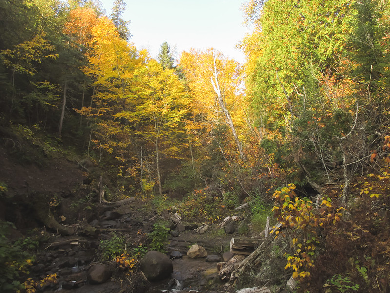 Cascade River State Park in Fall