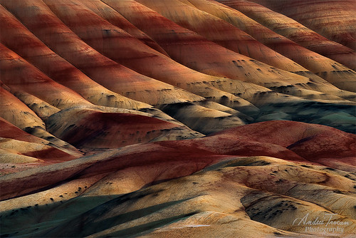 Painted-Hills-03,-OR por Andrei Trocan