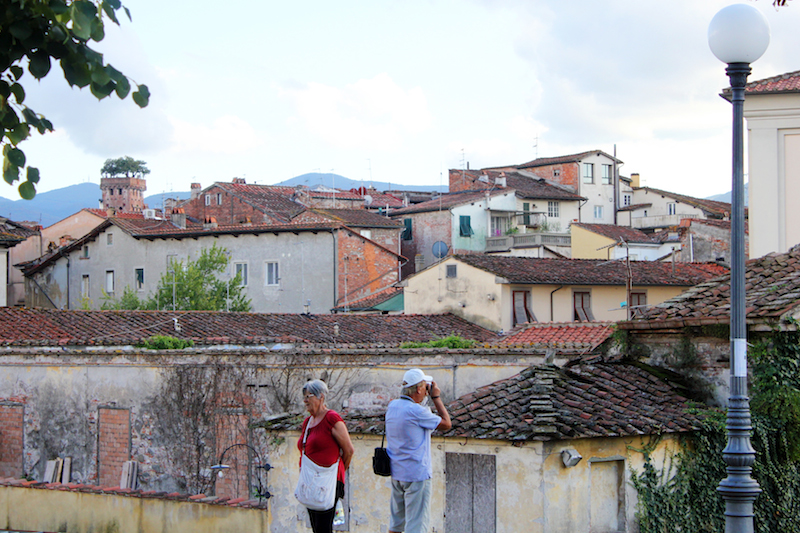 Lucca rooftops from city park