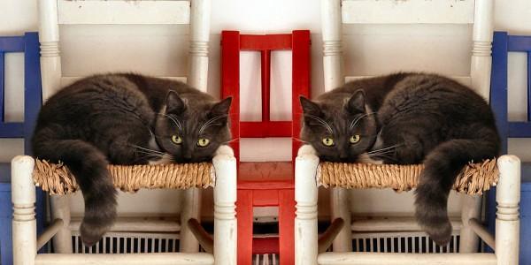 sisters-in-symmetry