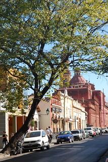 Scenes from Salta, Argentina