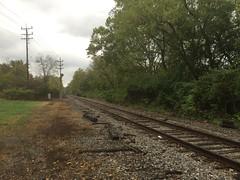 Indiana & Ohio line (Oasis Subdivision)