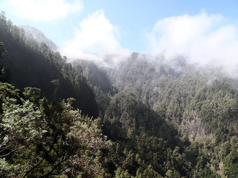 Vacaciones Guela. La Palma. 73 fotos 15302436119_d23df57ea9_b