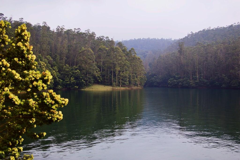 Pykara Lake Ooty