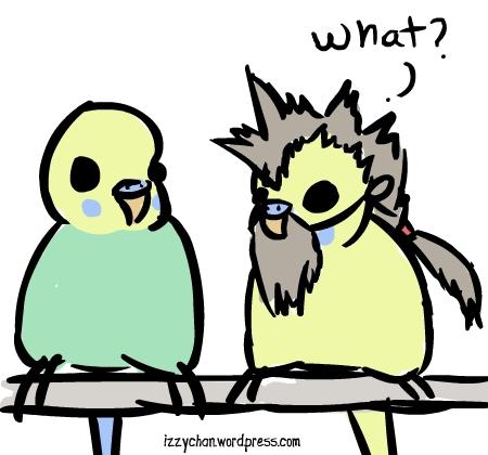 budgies parakeet Halloween bearded