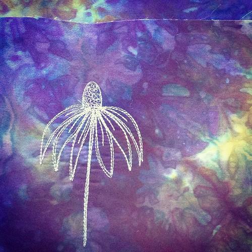 Purple coneflower! #FBP