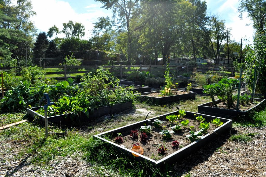 Montessori-Inspired: Nature in the Montessori Environment – CrumbBums