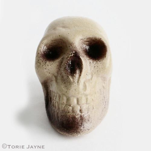 plastic skull