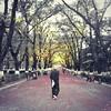 Walking through the light left from summer.  #Tbilisi #park #oldman #walking #humansoftbilisi #autumn
