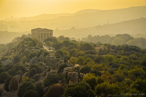 panorama architecture landscape greek temple golden hour sicily ora architettura sicilia agrigento valledeitempli valleyoftemples greco tempiodellaconcordia templeofconcordia dorata