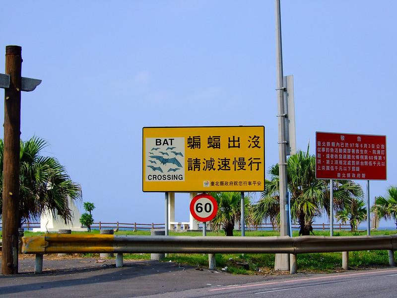 038-蝙蝠出沒_請減速慢行-2