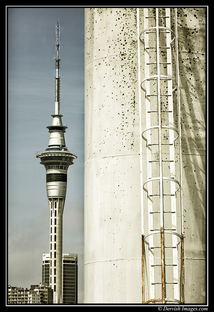 Skytower Ladder