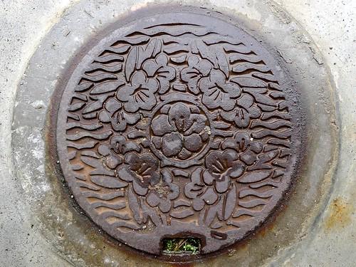 Shiga town Shiga pref, manhole cover 3 (滋賀県志賀町のマンホール3)