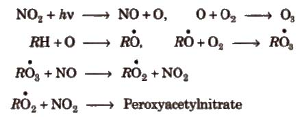 CBSE Class 11 Chemistry Notes Environmental Chemistry