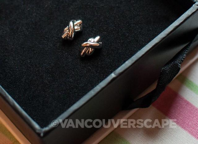 Wantable/Lizzie silver earrings
