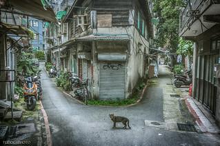 晉江街 Jinjiang Street
